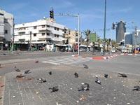 התחנה המרכזית הותיקה בתל אביב / צלם: תמר מצפי